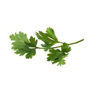 parsley raw
